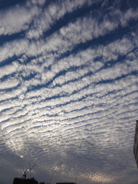 虹・・・ 幻日&タンジェントアーク?(10/8) そして波状雲(10/13)_b0006870_1291111.jpg