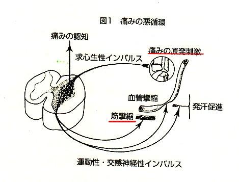 b0052170_20111562.jpg