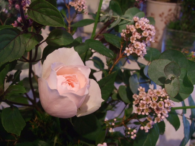 オークリーフ花の教室(清水さんと安藤さんの作品)_f0049672_17154699.jpg