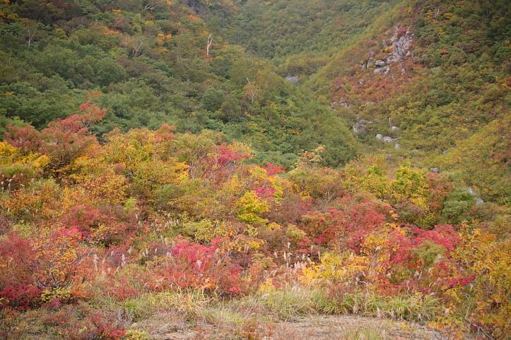 秋田 栗駒山の紅葉 その6_e0165983_13275251.jpg
