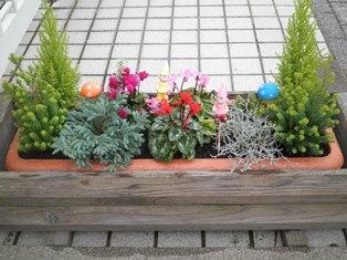 休日の庭いじり_b0232198_10531743.jpg