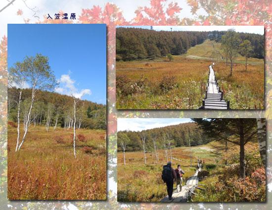 入笠山(2日目) _c0051105_21362731.jpg