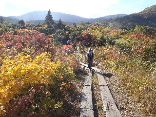 栗駒山紅葉ハイク_f0105112_15383998.jpg