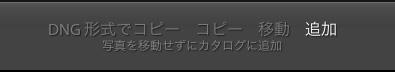 b0229648_1743960.jpg