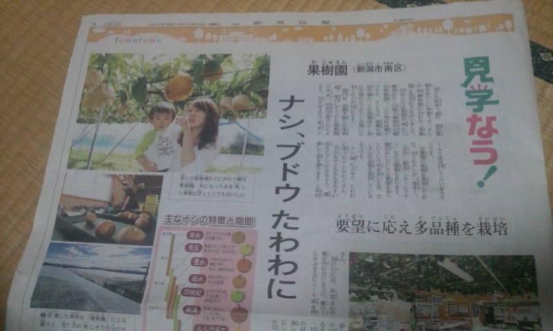 10月16日新潟日報の週刊ふむふむです。_a0232051_721739.jpg