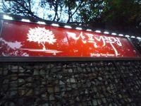 眠らない街…seoul…3日間の旅へ   no1_d0266681_2048450.jpg