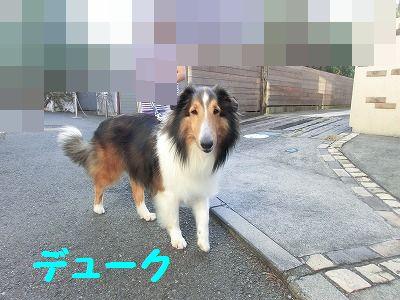 e0222588_17312549.jpg