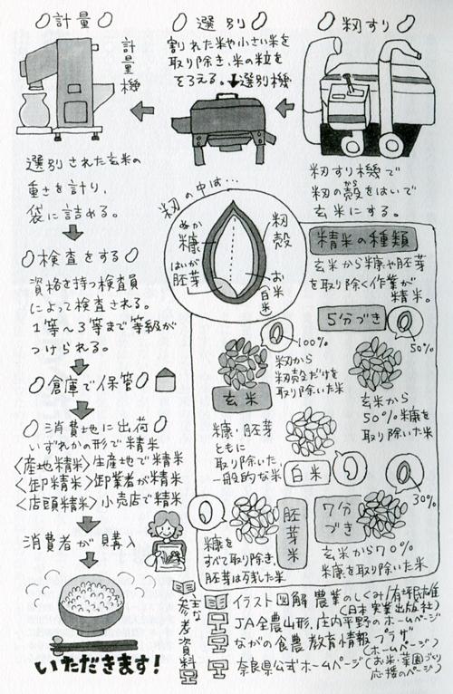 「望星」(東海大学出版会) 2012年11月号で、イラスト図解「お米ができるまで」を描きました。_f0134538_937398.jpg