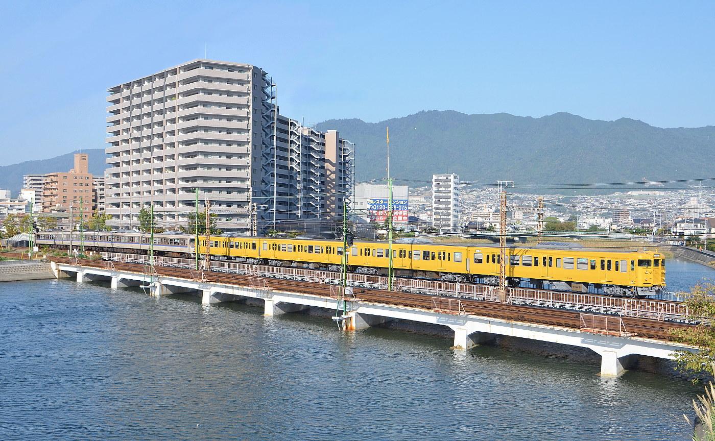 いつもの八幡川・・・'12年10月16日_a0251146_185686.jpg