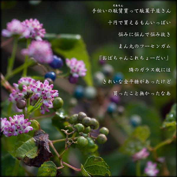 a0197968_1675917.jpg