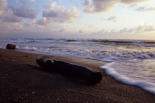 夕陽の海を…_b0259218_1163646.jpg