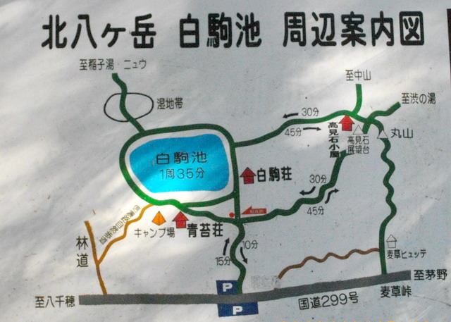 2012紅葉情報_d0102327_2003125.jpg