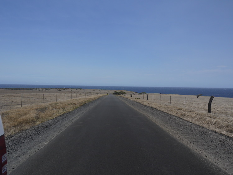 Big Island 神秘と癒しのエネルギー Vol.1_a0224731_1213987.jpg