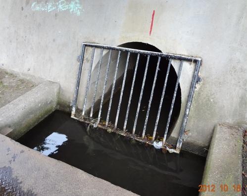 下水道を考えるⅡ(小金井小次郎、汚水、雨水吐き室、スクリーン、合流式下水道、分流式、吐口、野川)_e0223735_1214012.jpg