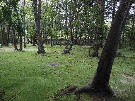 京都&奈良_e0040673_1024935.jpg