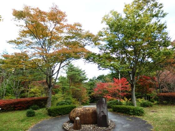 秋色ことりはうす_b0189727_1555295.jpg