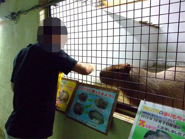 JR東日本 小さな旅で紹介♪…されていました_a0179837_16184163.jpg