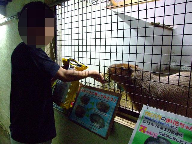 JR東日本 小さな旅で紹介♪…されていました_a0179837_16563033.jpg