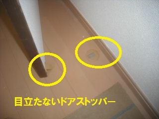 f0031037_2055833.jpg