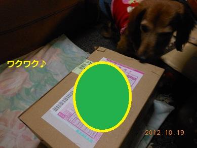 c0206342_1824726.jpg
