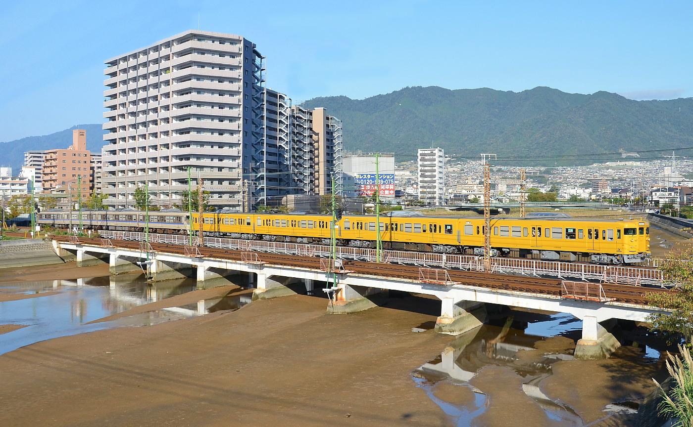 いつもの八幡川・・・'12年10月19日_a0251146_20282062.jpg