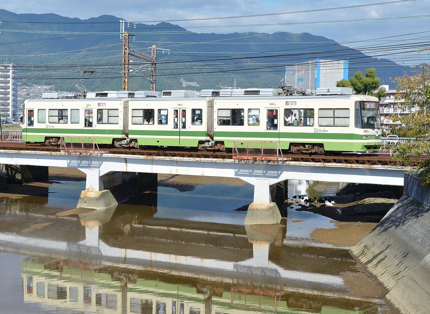 いつもの八幡川・・・'12年10月19日_a0251146_20313473.jpg