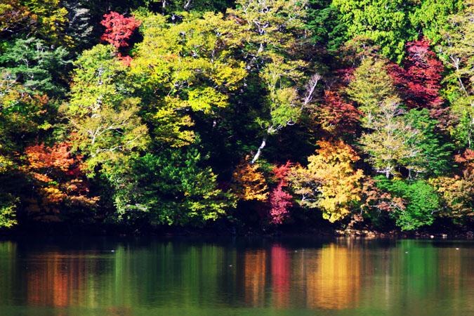 奥日光 湯ノ湖の紅葉1_a0263109_17565934.jpg