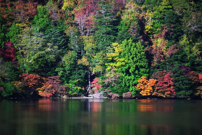 奥日光 湯ノ湖の紅葉1_a0263109_17571871.jpg