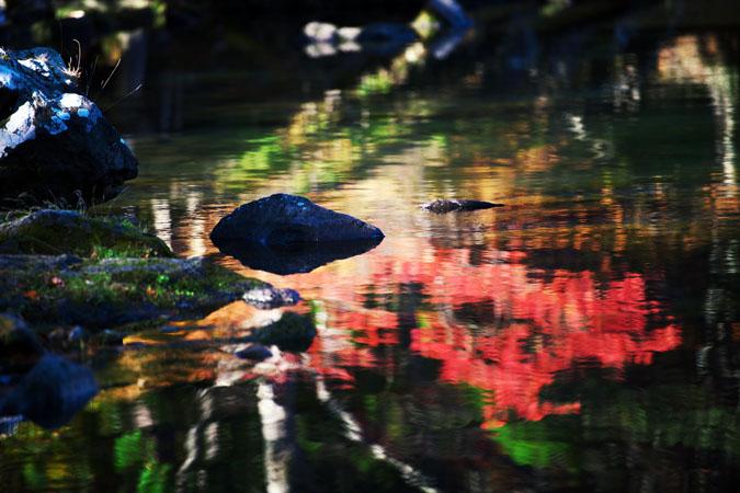 奥日光 湯ノ湖の紅葉1_a0263109_17582110.jpg