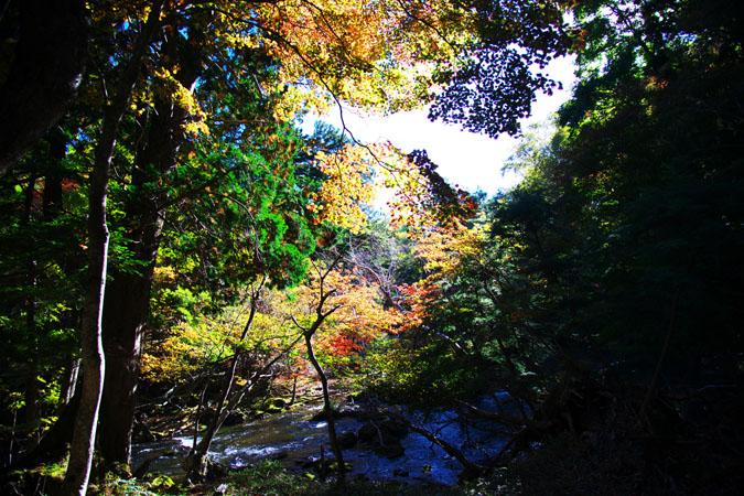 奥日光 湯ノ湖の紅葉1_a0263109_17595757.jpg