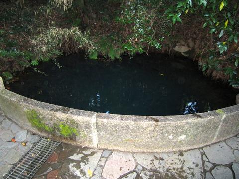 水の国(熊本都市圏)を旅する~西原村のお池さん~_b0228113_17112210.jpg