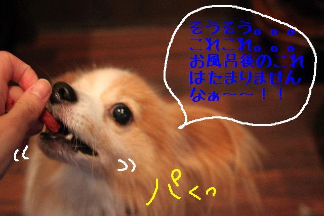 b0130018_045084.jpg