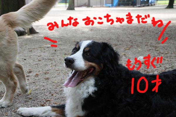 f0203423_16483084.jpg