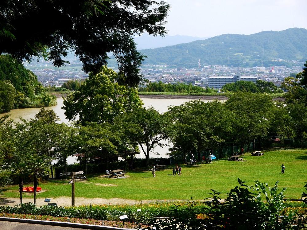 和歌山県植物公園緑花センター _b0093754_22352040.jpg