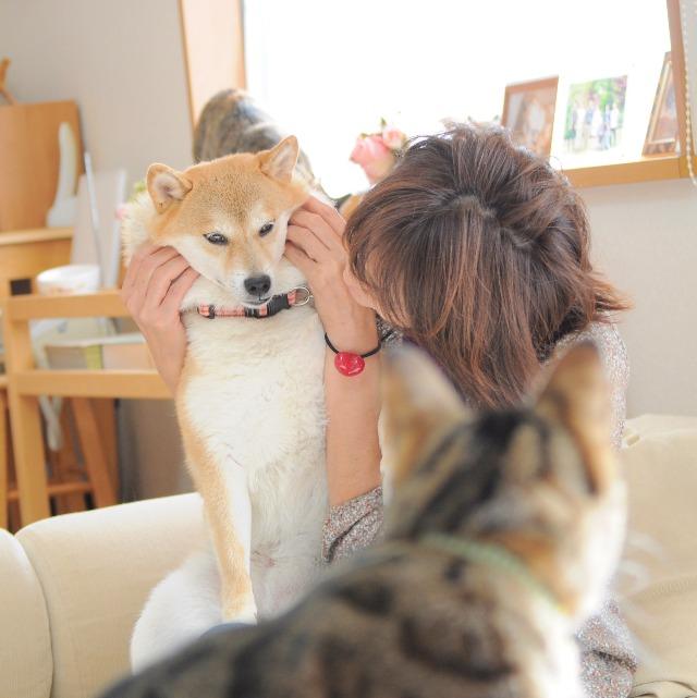 私の愛しいかぼちゃん_a0126590_1027840.jpg