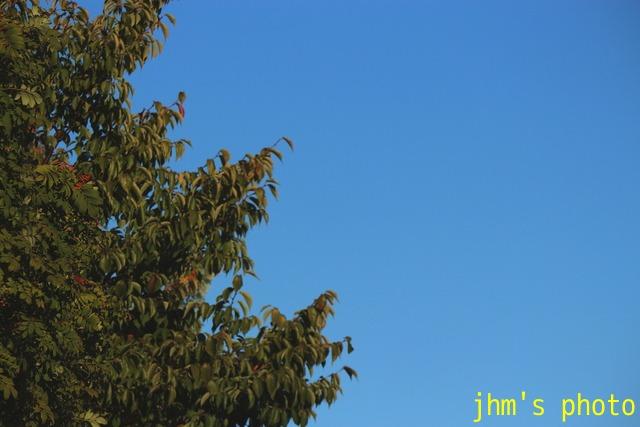 ある秋晴れの日の函館_a0158797_051129.jpg