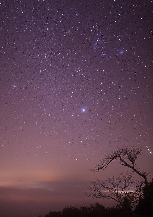"""""""オリオン座流星群"""" NO.1_a0140608_9175113.jpg"""