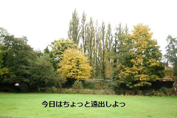 d0104926_0194539.jpg