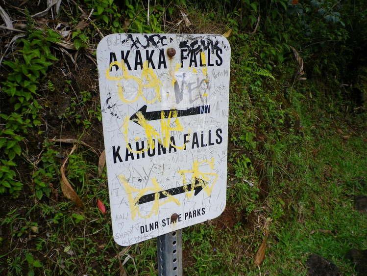 Big Island 神秘と癒しのエネルギー Vol.2_a0224731_18341643.jpg