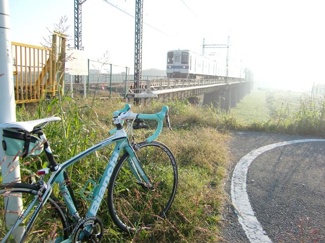 【チャリ】走る江戸川サイクリングロード_a0293131_11224680.jpg