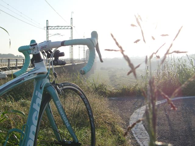【チャリ】走る江戸川サイクリングロード_a0293131_11244323.jpg
