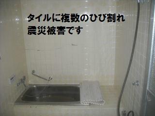f0031037_19475230.jpg