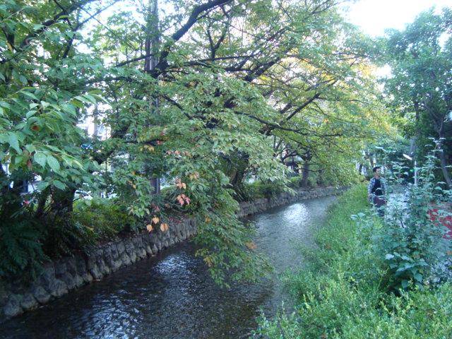 京都精華大学でゲスト講演させていただきました。_f0232060_18111656.jpg
