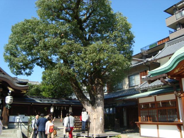 京都・一條戻橋「清明神社」へ行く。_f0232060_19455235.jpg