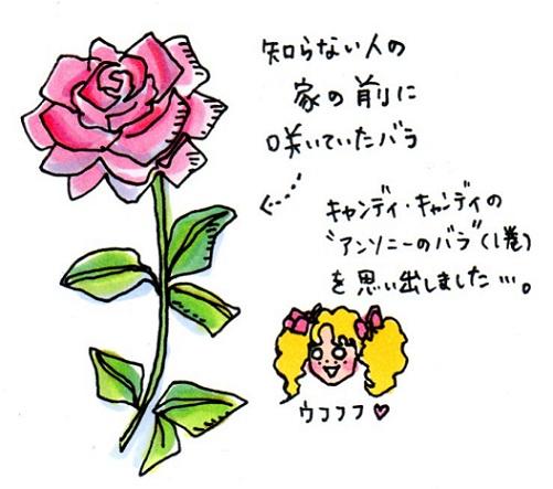 f0223661_0135116.jpg