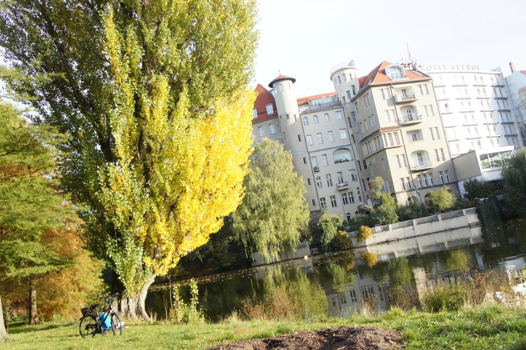 週末、黄金色に輝くベルリンです!_c0180686_1751439.jpg