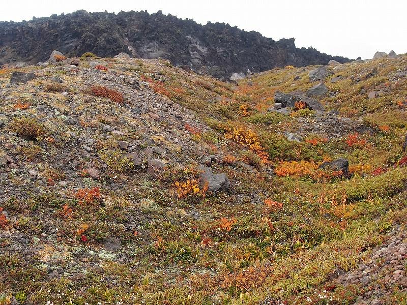10月19日、樽前山の紅葉-最終編-_f0138096_2132561.jpg