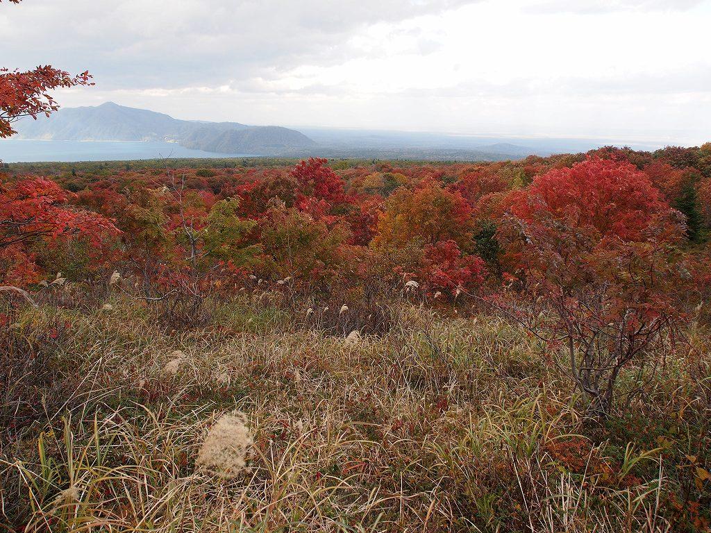 10月19日、樽前山の紅葉-最終編-_f0138096_21341556.jpg