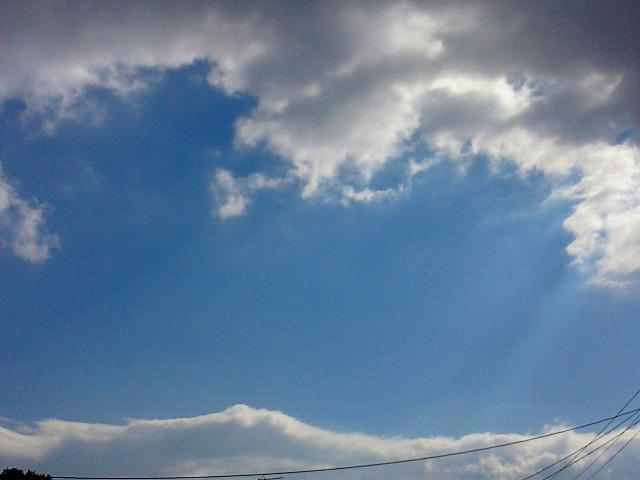 日曜日ですね〜♪_c0140599_11432379.jpg