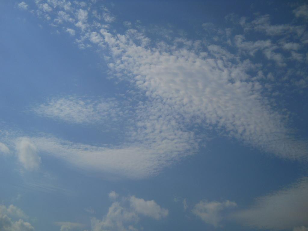 秋のモザイク~鱗雲_f0146802_2102655.jpg